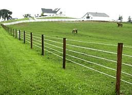 Fence Types Fox S Livestock Fencing